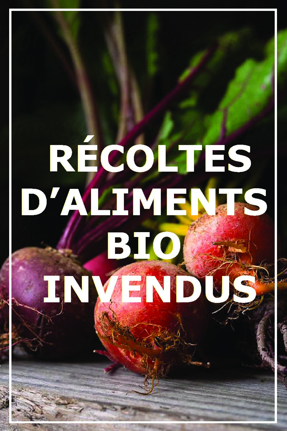 Récoltes invendus alimentaires bio – Les Eco-Charlie & DOC !