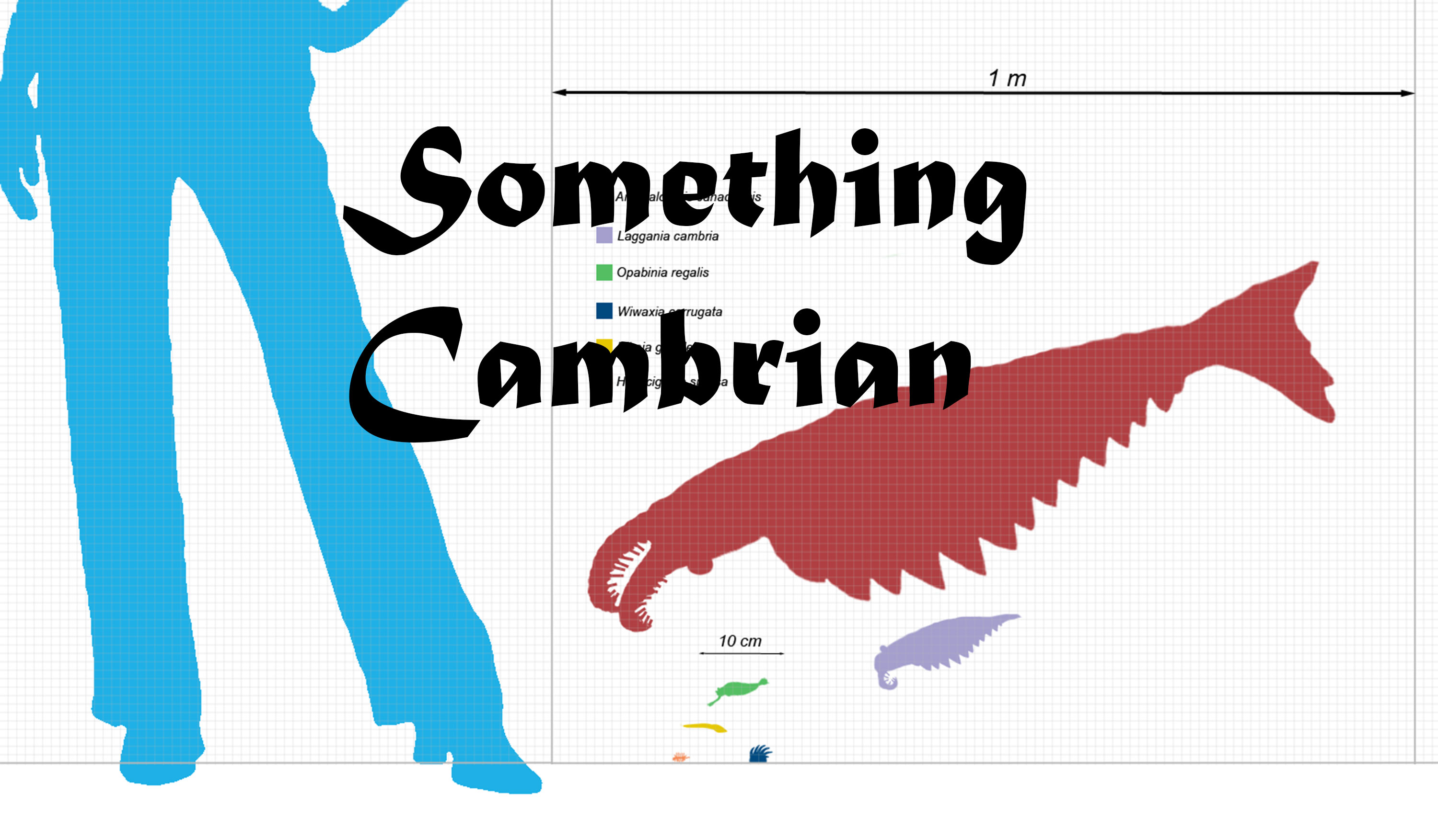 Something-Cambrian